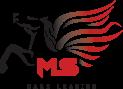 MS Carz Leasing